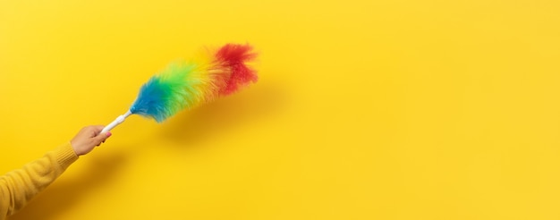 Plumeau Coloré à La Main Sur Jaune Photo Premium