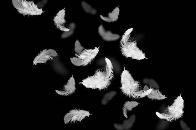 Plumes blanches flottant dans l'air Photo Premium