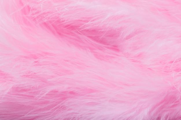 Plumes D'oiseau Rose Dans Le Style Doux Et Flou, Fond De Plume Rose Moelleux Photo Premium
