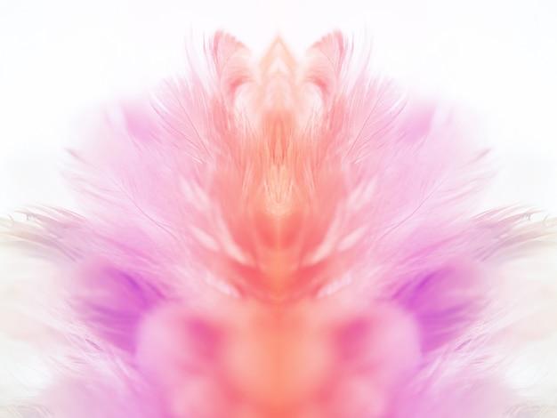 Plumes de poulet dans le style doux et flou pour le fond Photo Premium
