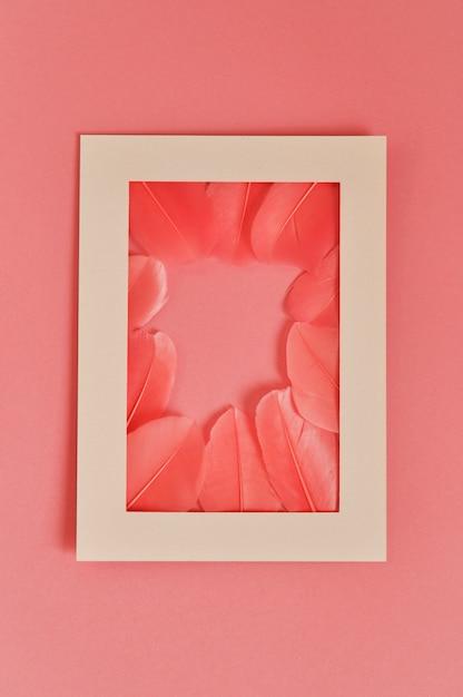 Plumes réelles avec cadre couleur corail tendance Photo Premium