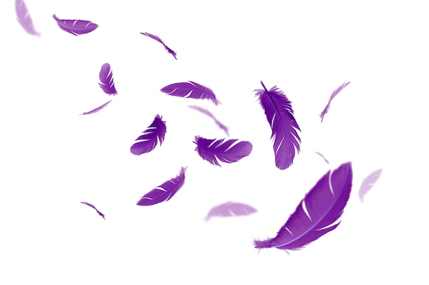 Des plumes violettes flottent dans les airs. Photo Premium