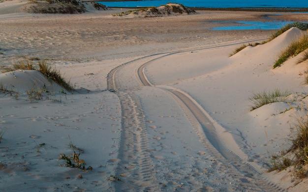 Pneu de voiture à quatre roues motrices imprimé sur une dune de sable sur la plage de trafalgar, cadix, espagne. Photo Premium
