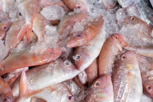 Poisson frais placé sur la glace vendu au marché. Photo Premium