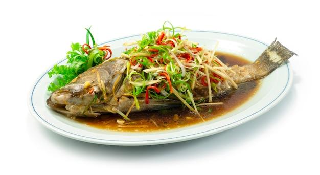 Poisson Mérou Cuit à La Vapeur Avec Sauce Soja Cuisine Chinoise Sideview Photo Premium