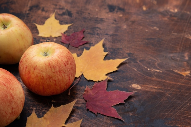 Pomme et érable rouge jaune laisse feuilles vieux grunge en bois Photo Premium