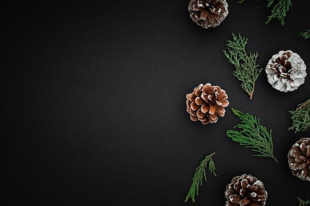 Pommes de pin et branches sur fond sombre Photo gratuit