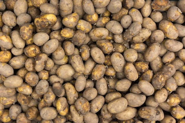 Pommes de terre au marché aérien Photo gratuit