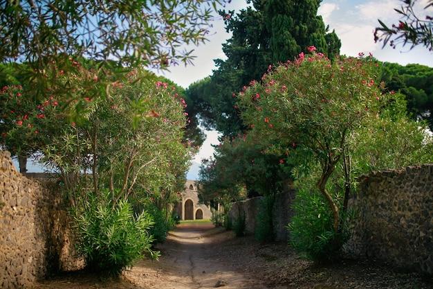 Pompei Photo Premium
