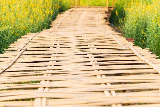 Pont en allée de bambou avec un champ de fleurs jaunes (chanvre sunn) en journée ensoleillée Photo Premium