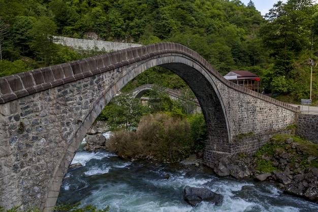 Pont En Arc Au-dessus D'une Rivière Entourée De Forêts à Arhavi En Turquie Photo gratuit