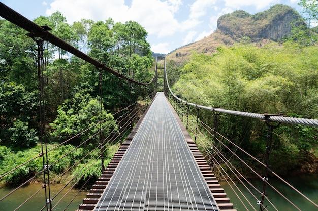 Pont de fer et montagne Photo Premium