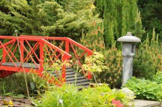 Pont Jardin Japonais Telecharger Des Photos Gratuitement