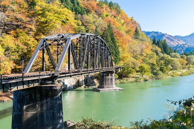 Pont noir de fukushima, rivière tadami, japon Photo Premium