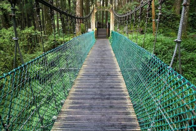 Le Pont Vert En Forêt Alishan à Taiwan Photo Premium