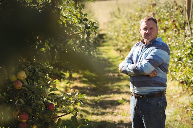 Portrait d'agriculteur debout avec les bras croisés dans un verger de pommiers Photo gratuit
