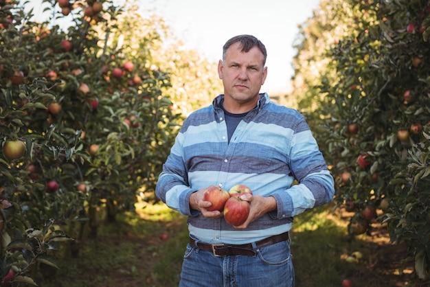 Portrait d'agriculteur tenant des pommes dans un verger de pommiers Photo gratuit
