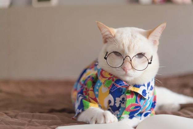 Portrait de chat blanc portant des lunettes et livre de lecture Photo Premium