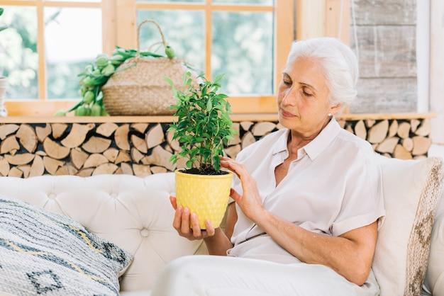 Portrait, de, femme aînée, séance, sur, sofa, regarder, plante pot Photo gratuit