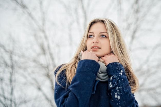 Portrait D'une Femme Avec Du Maquillage Et Une Belle Coiffure En Hiver Photo Premium