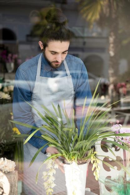 Portrait, de, a, fleuriste, placer, vase, vu, à, verre Photo gratuit