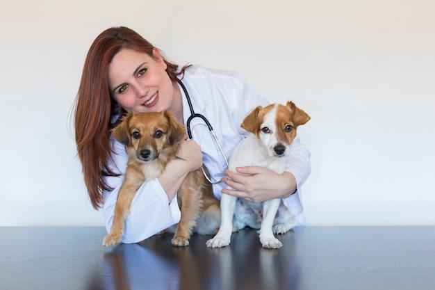 Portrait D'une Jeune Femme Vétérinaire Examinant Deux Petits Chiens Mignons à L'aide D'un Stéthoscope, Isolé Sur Fond Blanc. à L'intérieur Photo Premium