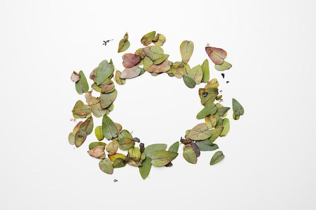 Pose plate de feuilles avec fond Photo gratuit