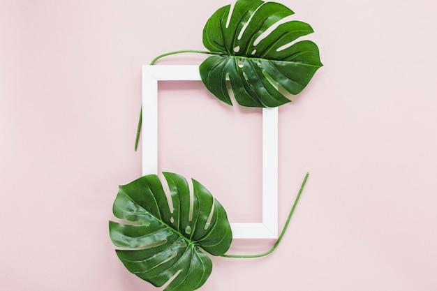 Pose plate de feuilles tropicales avec fond Photo gratuit