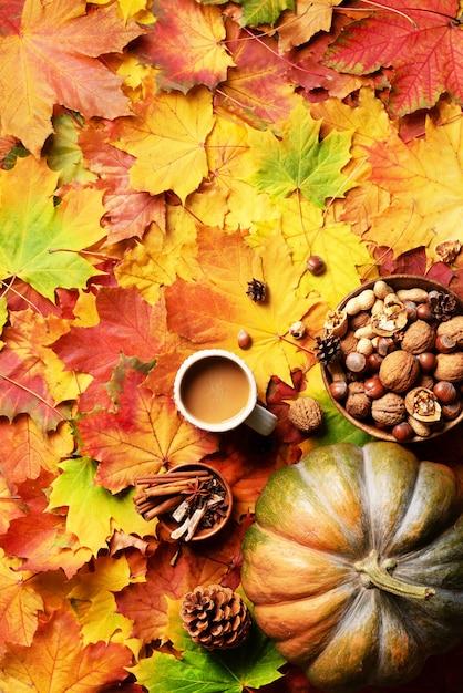 Potiron, bol de noix en bois, tasse à café, cornet, cannelle Photo Premium