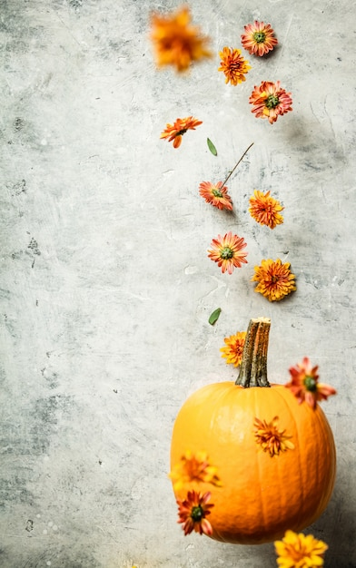 Potiron et chrysanthème en lévitation, espace pour le texte Photo Premium