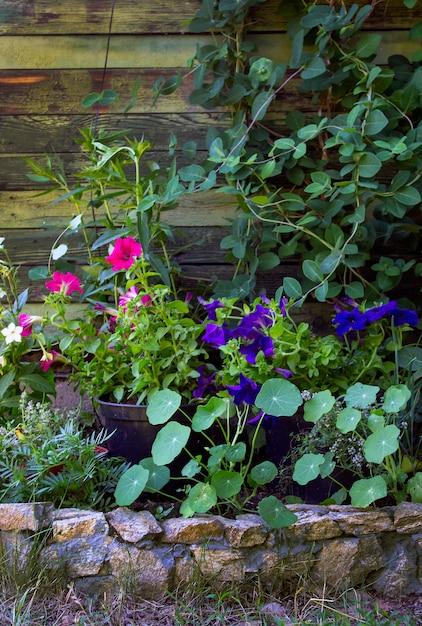 Pots de fleurs comme décoration dans le jardin Photo Premium