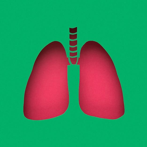 Poumons En Papier Photo gratuit