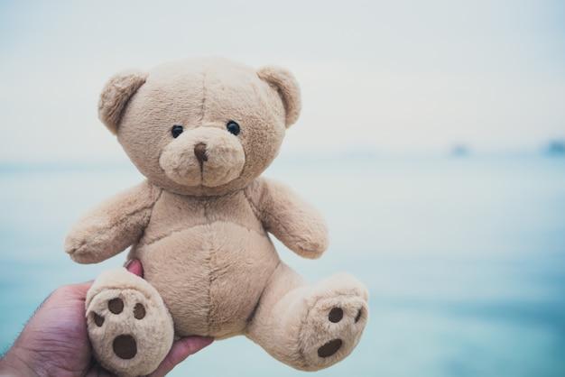 Poupée d'ours dans les mains. fond de plage et de la mer Photo Premium