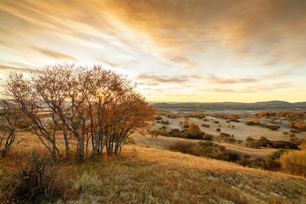 Prairies d'automne de la mongolie intérieure Photo Premium