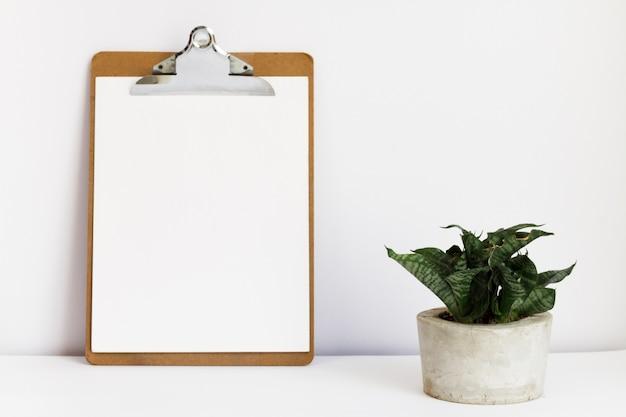 Presse-papiers à côté d'une plante en pot Photo gratuit