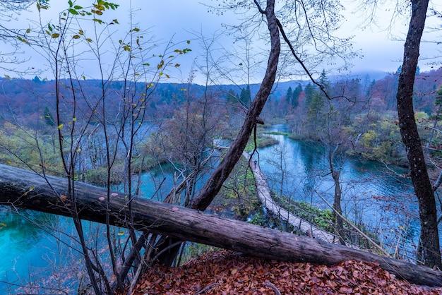 Prise De Vue En Grand Angle D'un Sentier En Bois Dans Le Parc National Des Lacs De Plitvice En Croatie Photo gratuit