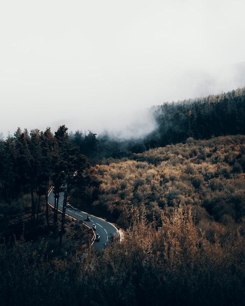 Prise De Vue Verticale à Grand Angle D'une Autoroute Sinueuse Entourée D'une Forêt Un Jour Brumeux Photo gratuit