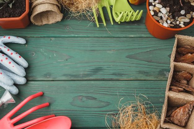 Processus de transplantation succulente. mini pousses et accessoires de jardinage Photo Premium