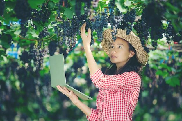 Les producteurs de raisins sont heureux de vendre des raisins du marché en ligne Photo gratuit