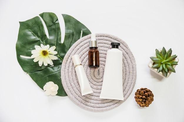Produit cosmétique et bouteille d'huile essentielle sur caboteur avec fleur; feuille; pomme de pin et cactus Photo gratuit