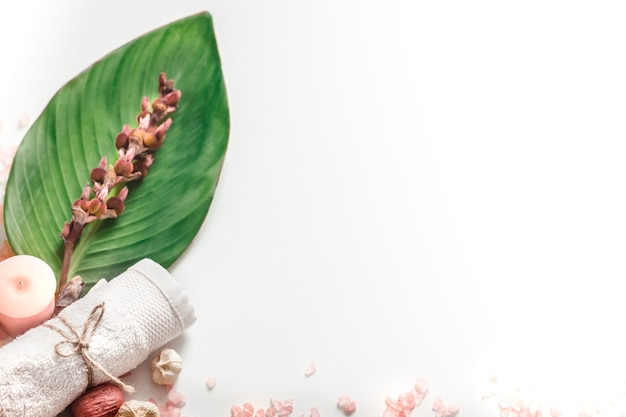 Produits De Spa Bio Sur Fond Blanc Photo gratuit