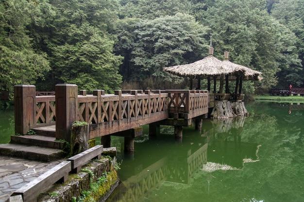 La promenade conduit au pavillon de la région du parc national alishan à taiwan. Photo Premium