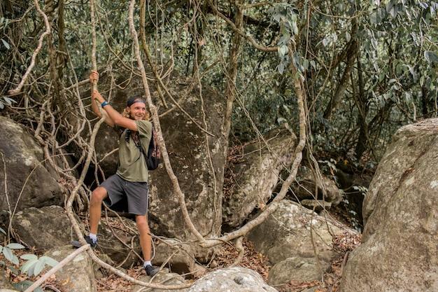 Promenades touristiques à travers les bois Photo gratuit