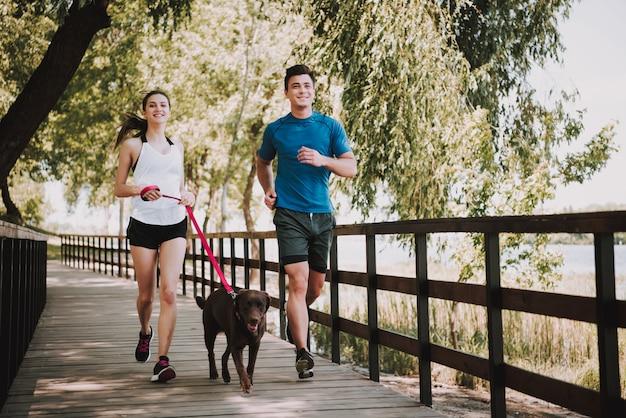 Les propriétaires avec animal est situé sur le pont dans le parc. été ensoleillé. Photo Premium