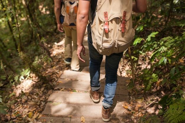 Les randonneurs sur le sentier en forêt Photo gratuit