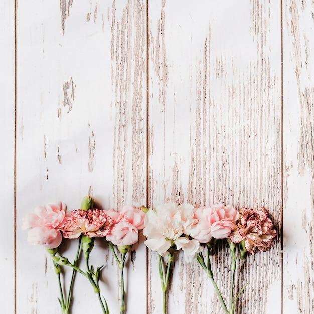 Rangée de fleurs d'oeillets disposés sur une table en bois Photo gratuit