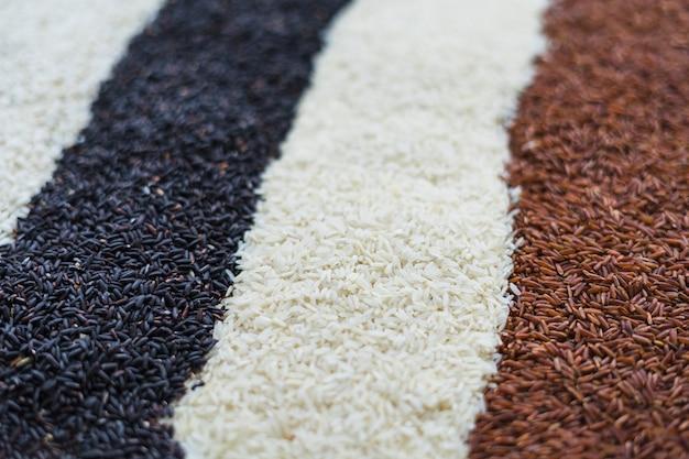 Rangées de noir; fond de riz blanc et rouge Photo gratuit