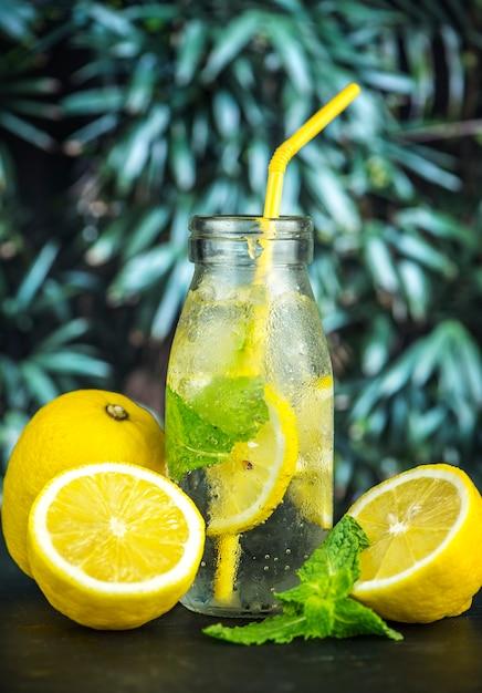 Recette d'eau infusée à la menthe et au citron Photo gratuit