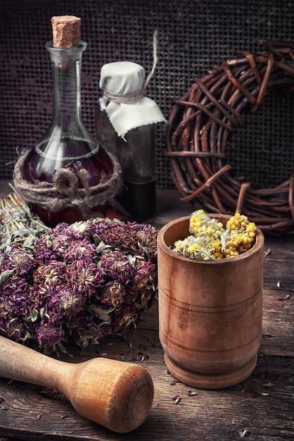 Récolte d'herbes médicinales Photo Premium