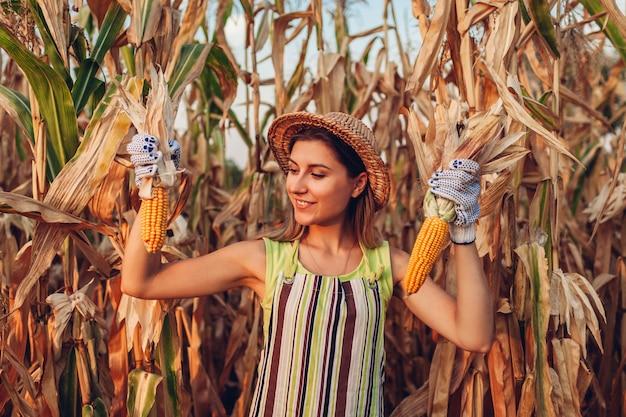 Récolte de maïs. jeune agricultrice cueillant la récolte de maïs. travailleur tenant des épis de maïs en automne. agriculture et jardinage Photo Premium